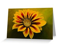 Striped beauty Greeting Card