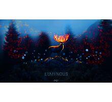 Luminous Photographic Print