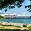 A Sunny Day beside Wanaka Blue by Larry Lingard-Davis