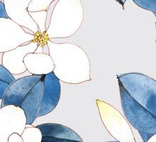 Magnolia in Spring Sticker