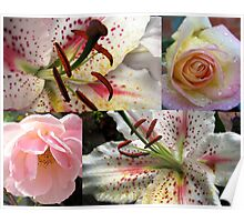 Roses and Lilies Collage - Unframed Poster