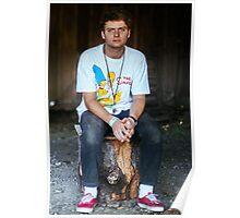Mac DeMarco on a Stump Poster