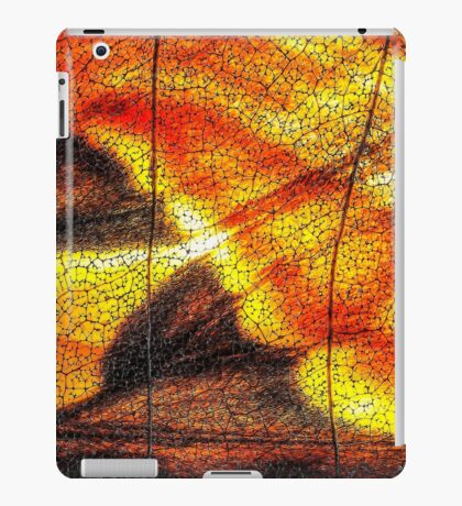 Hot Wing iPad Case/Skin