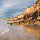 Demon's Bluff,Anglesea,Great Ocean Road.  by Darryl Fowler