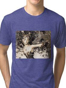 Spring Fairy in Fantasy Garden Tri-blend T-Shirt