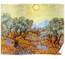 1889-Vincent van Gogh-Olive Trees with yellow sky and sun-73,66x92,71 Poster
