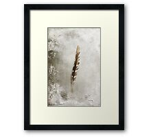 Standing Feather Framed Print