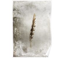 Standing Feather Poster