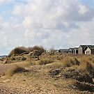 Huts in the Dunes by John Thurgood