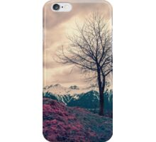 Japanese Mountains iPhone Case/Skin