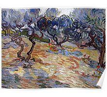 1889-Vincent van Gogh-Olive Trees-51x65,2 Poster