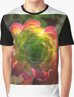 Backlit Succulent Graphic T-Shirt