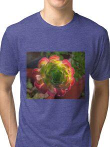 Backlit Succulent Tri-blend T-Shirt