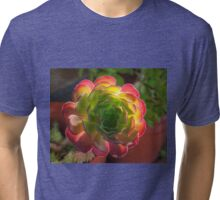 Backlit Succulent Tri-blend T-Shirt