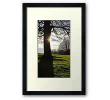 Afternoon landscape Framed Print