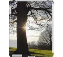 Afternoon landscape iPad Case/Skin