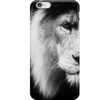 The Lion and the dark iPhone Case/Skin