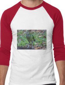 Baby Bowerbird Men's Baseball ¾ T-Shirt