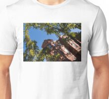Framing the Ornate Pink House - Washington, DC Dupont Circle Neighborhood  Unisex T-Shirt