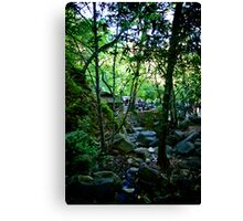 Cold Spring Tavern Canvas Print