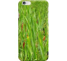 Cattails by the Lake iPhone Case/Skin