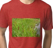 Cattails by the Lake Tri-blend T-Shirt