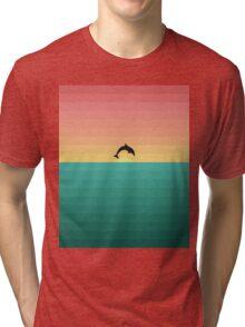 Dolphin Sunset Tri-blend T-Shirt