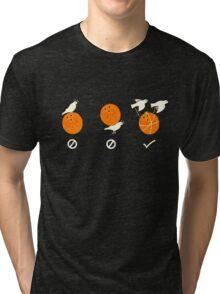Swallow Tri-blend T-Shirt