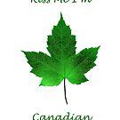 Kiss Me I'm Canadian - St Patrick's Day by Jim Cumming
