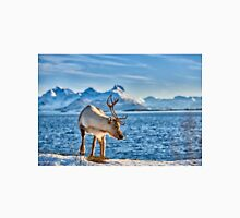Reindeer in snow covered landscape at sea Unisex T-Shirt