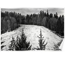 Dark winter landscape. Poster