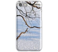 Tree branches on a winter landscape. iPhone Case/Skin