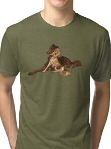 Ymir and Christa - Borzoi and Saluki Tri-blend T-Shirt