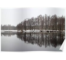 Trees reflected in water Poster