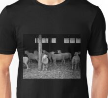 Timid Explorer Unisex T-Shirt