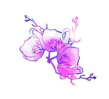 ink watercolour flower Photographic Print