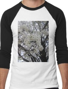 Blossoms Before A Storm Men's Baseball ¾ T-Shirt