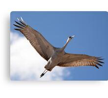 Crane Overhead Canvas Print