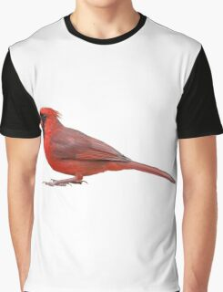 Northern Cardinal Isolated on White Background Graphic T-Shirt