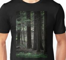 Trees in the Woods Unisex T-Shirt