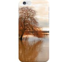Flooded Reflection iPhone Case/Skin