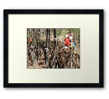 Meanwhile Back in the Woods Framed Print