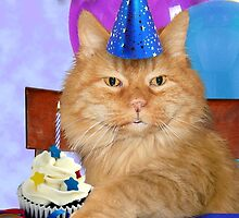 Birthday Orange Tabby Cat by jkartlife