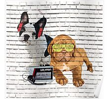 Dogue De Bordeaux & French Bulldog Poster