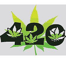 420 Weed Leafs Photographic Print