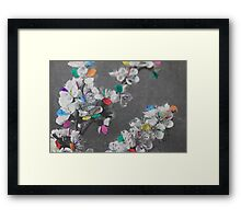 Apricot Blossoms Framed Print
