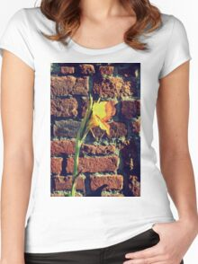 Canna indica #3 Women's Fitted Scoop T-Shirt