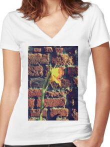Canna indica #3 Women's Fitted V-Neck T-Shirt