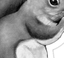Squirrel Eating: Pencil Drawing of Cute Squirrel Sticker