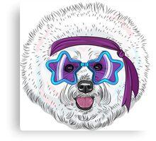 Star Disco dog Bichon Canvas Print